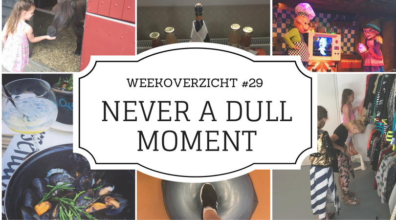 Never a Dull Moment weekoverzicht 29