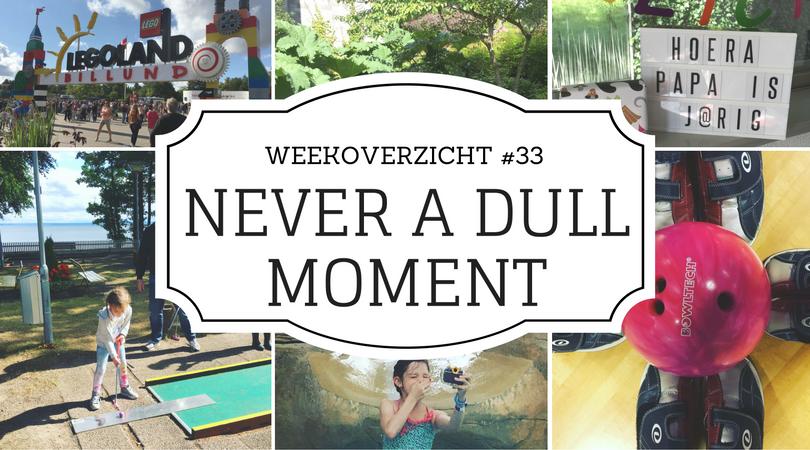 weekoverzicht -Never a Dull Moment #33