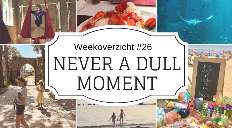 Weekoverzicht   Never a dull moment week 26 -2019