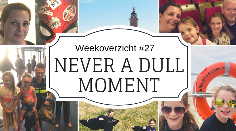 Never a Dull Moment week 27