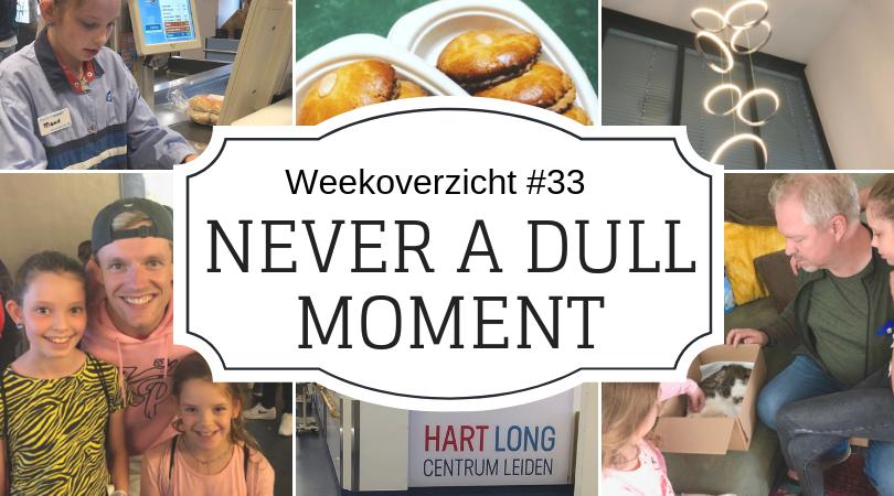 Weekoverzicht   Never a dull moment week 33 - Rollercoaster week
