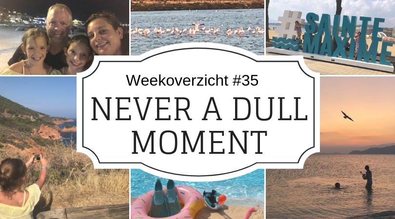 Never-a-Dull-Moment-week-35