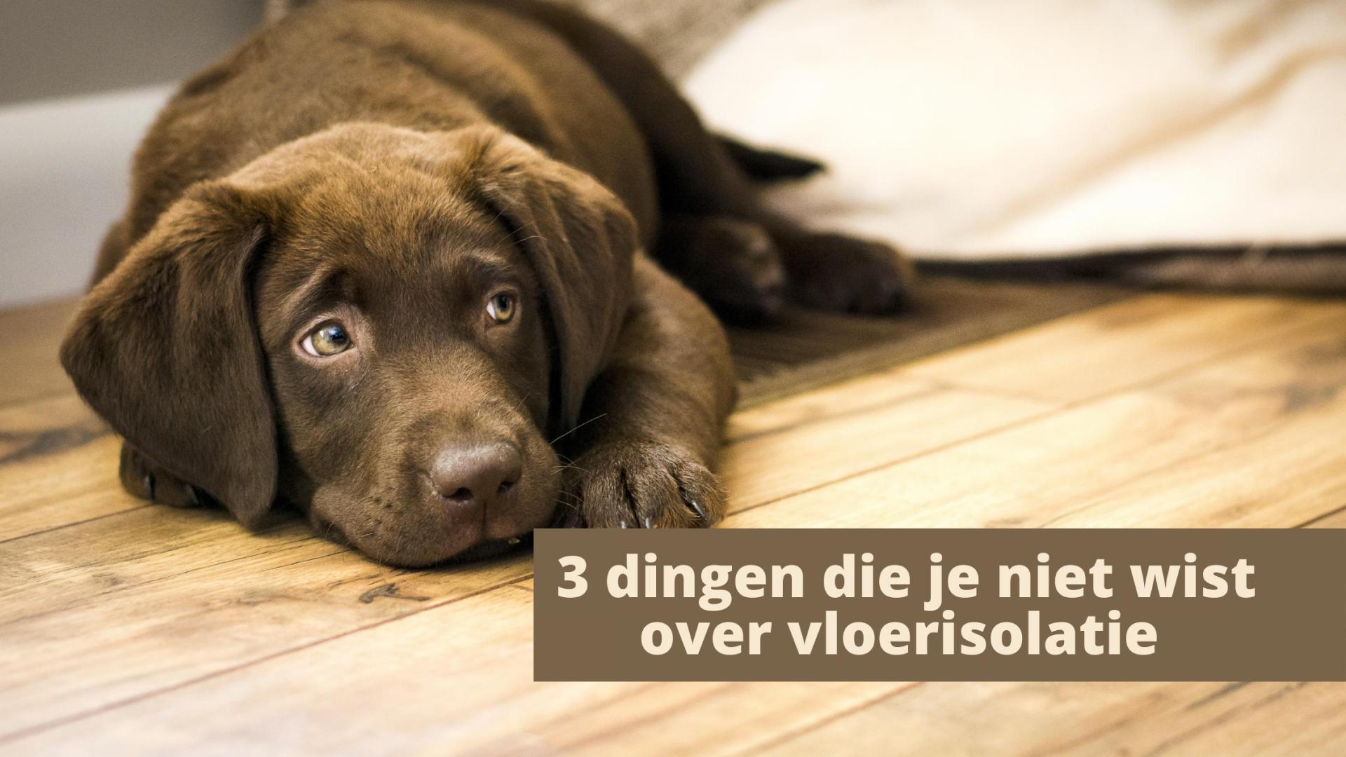 3 dingen die je niet wist over vloerisolatie